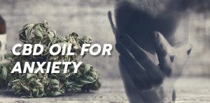 What are the things important to know before buying CBD oil for anxiety